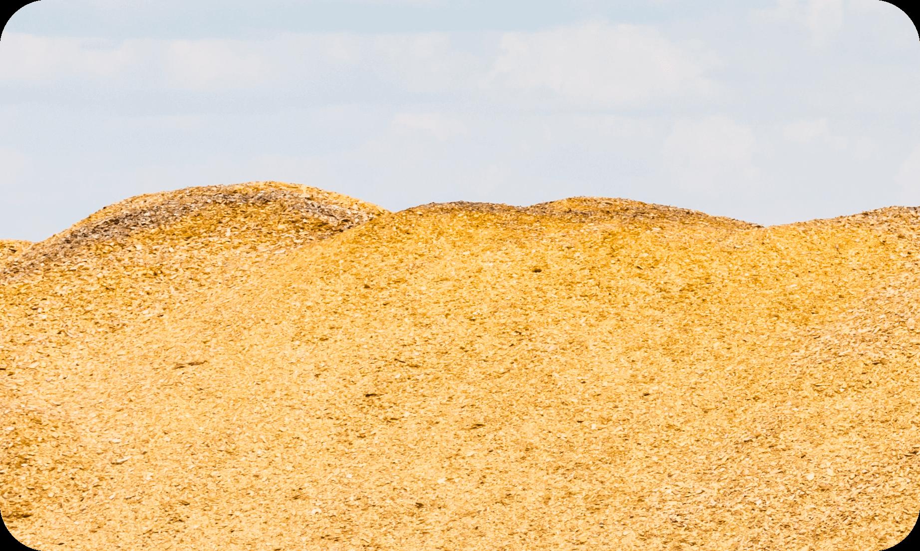 biomass ctrm